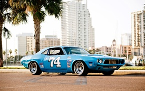 Картинка Dodge Challenger, old, 1973, nascar, blue race car