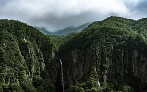 Картинка зелень, небо, деревья, природа, водопад, леса