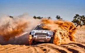 Обои X-Raid, Raid, Спорт, Скорость, Британия, Винил, Пустыня, Ралли, Гонка, Жара, Mini, Rally, Занос, MINI Cooper, ...