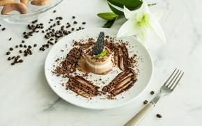 Картинка шоколад, лилия, печенье, мороженое, мята, десерт, кофейные зёрна