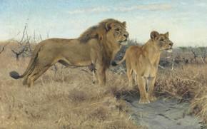 Картинка 1922, German painter, Фридрих Вильгельм Кунерт, немецкий живописец, Friedrich Wilhelm Kuhnert, Львы на равнинах Африки, …