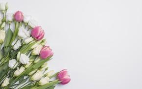 Картинка цветы, букет, тюльпаны, эустома