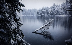 Обои Jura, озеро, снег, Switzerland, Soul of Gruère, осень