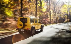 Обои осень, Mercedes-Benz, скорость, вид сзади, AMG, G-Class, Gelandewagen, G 63, G-wagen, Colour Edition