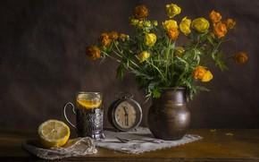 Картинка стакан, лимон, чай, часы, калужница