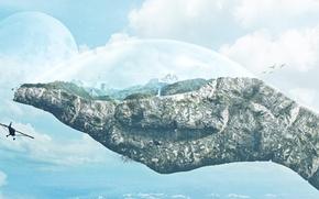 Картинка лес, небо, облака, горы, птицы, камень, планета, водопад, рука, пирамида, самолёт, купол, the world in …