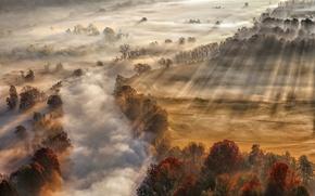 Обои осень, река, туман, свет, пар, лучи