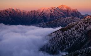 Картинка холод, зима, иней, лес, небо, снег, пейзаж, закат, горы, природа, туман, холмы, вершины, вид, высота, …