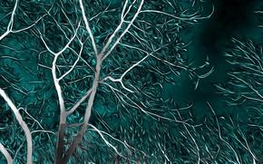 Картинка ночь, рендеринг, дерево, ветер, ветви