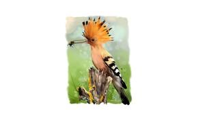 Картинка пчела, птица, клюв, бревно