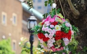 Обои гвоздики, композиция, розы, шар, гортензия
