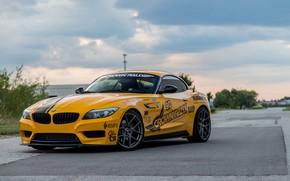 Картинка BMW, Yellow, E89