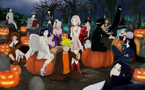 Картинка kawaii, Naruto, halloween, anime, ninja, manga, shinobi, Naruto Shippuden, kunoichi, Hiouri-Nin, japonese, bishojo´