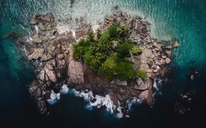 Картинка лес, деревья, камни, пальмы, скалы, остров, вид сверху