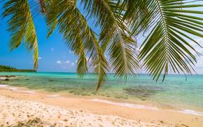 Картинка песок, море, волны, пляж, лето, солнце, пальмы, summer, beach, sea, sand, paradise, palms, tropical