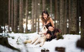 Обои платье, волк, зима, лес, снег, девушка, собака