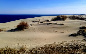 Картинка песок, море, калининград, куршская коса
