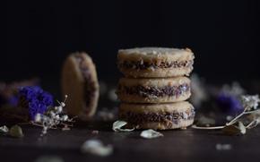 Картинка шоколад, печенье, десерт, выпечка