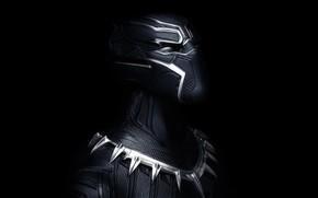 Картинка маска, броня, Black Panther