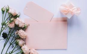 Картинка цветы, подарок, розы, love, розовые, бутоны, fresh, pink, flowers, romantic, gift, spring, roses, with love, …