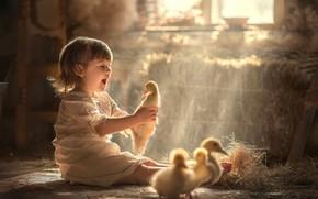 Картинка радость, сено, девочка, утята