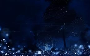Обои небо, Y_Y, девушка, крылья, ночь, падающая звезда, боке