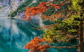 Обои осень, рыбаки, озеро, дерево, Oeschinensee, Бернское высокогорье, Bernese Oberland, Switzerland, Oeschinen Lake, озеро Эшинензе, лодка, ...