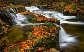 Картинка осень, листья, река, каскад