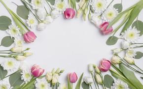 Картинка цветы, тюльпаны, хризантемы, эустома