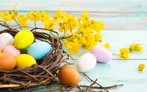 Картинка цветы, ветки, праздник, яйца, пасха, гнездо