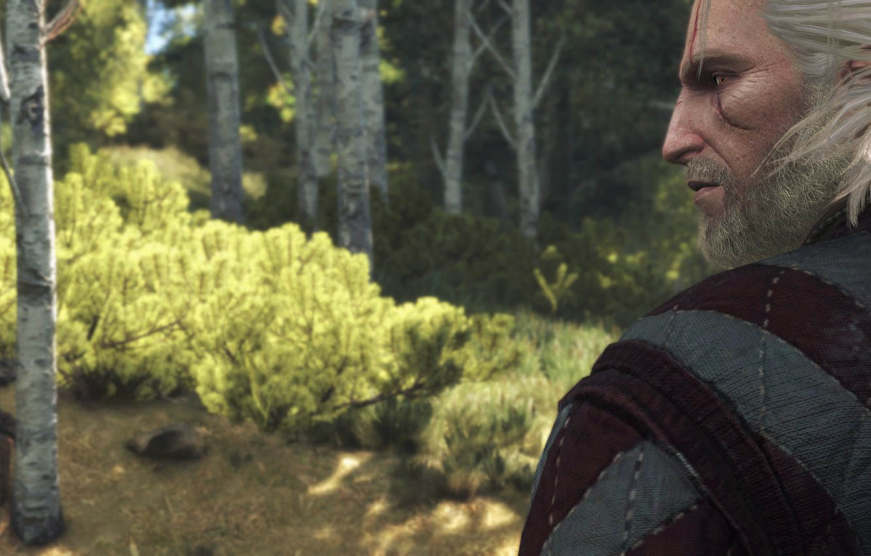 Фото обои Взгляд, Ведьмак, Геральт, Witcher 3, Скриншот