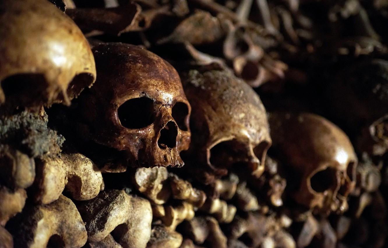 Обои черепа, Катакомбы, кости. Разное foto 6