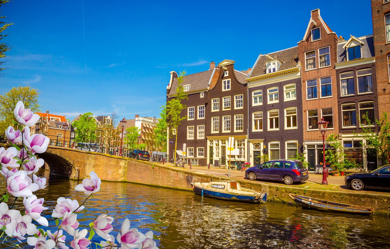 Фото обои мост, река, весна, Амстердам, цветение, bridge, blossom, Amsterdam, flowers, old, spring, buildings, Netherlands, canal