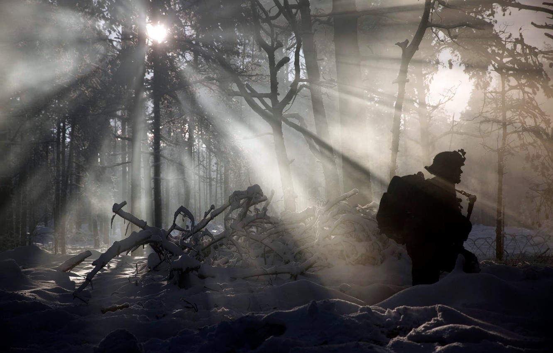 Фото обои зима, лес, солдат