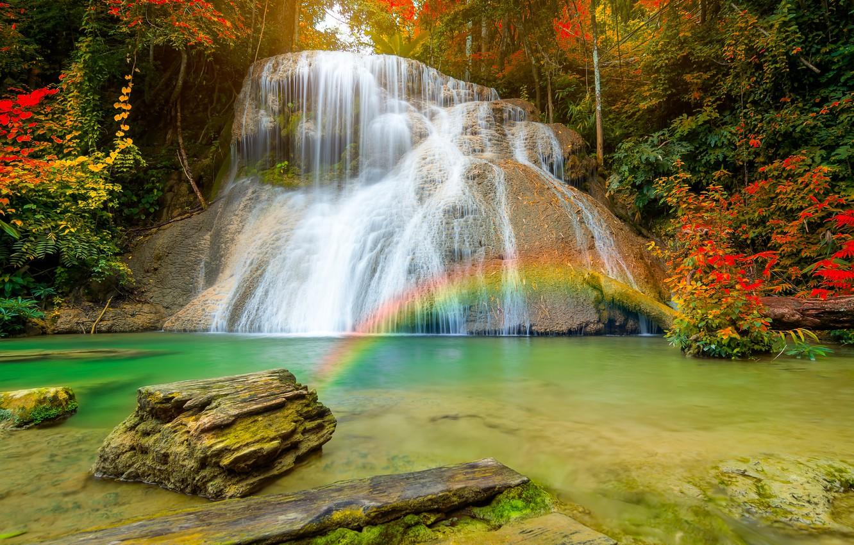 Фото обои осень, лес, природа, водопад, радуга, поток