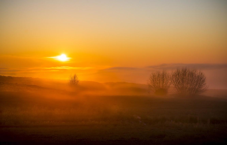 Фото обои поле, закат, природа, туман
