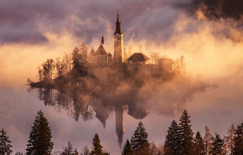 Фото обои лес, свет, туман, остров, утро, Бледское озере