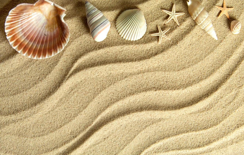 Обои Seashells, sand, Marine, жемчужина, perl, still life, Звезда, starfish, wood, ракушки. Разное foto 19