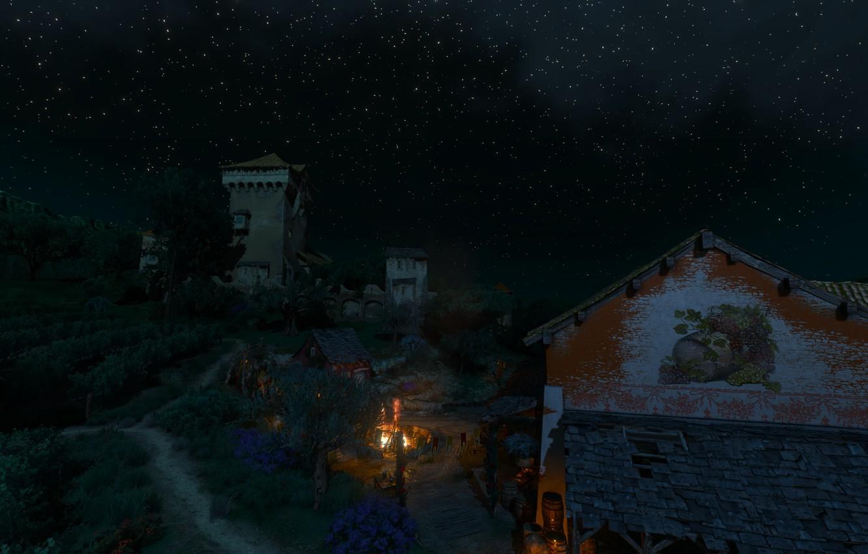 Фото обои ночь, звёзды, виноградник, the witcher 3 wild hunt, Туссент