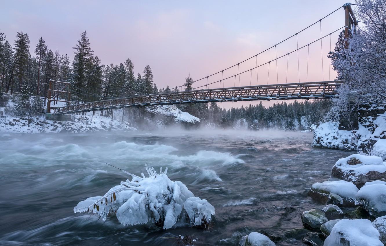 Фото обои зима, мост, река, утро