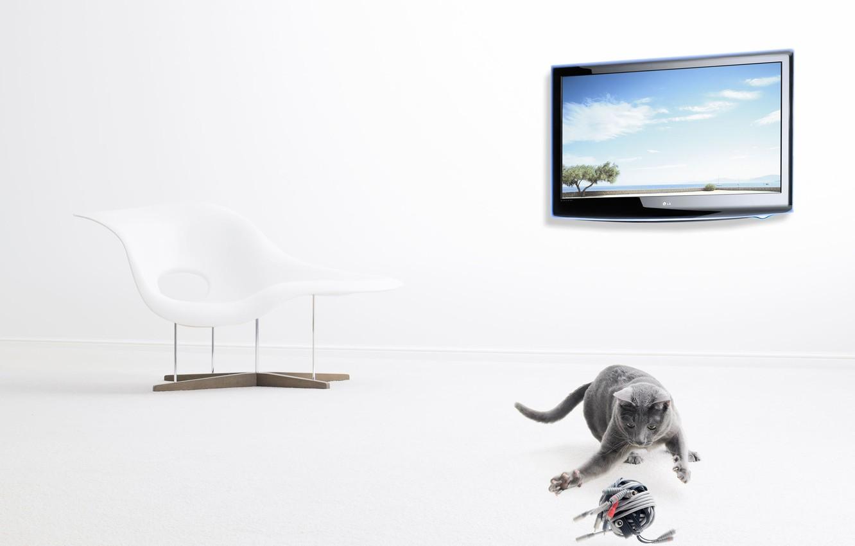 Фото обои клубок, телевизор, серый кот, Christophe Gilbert, современный стул
