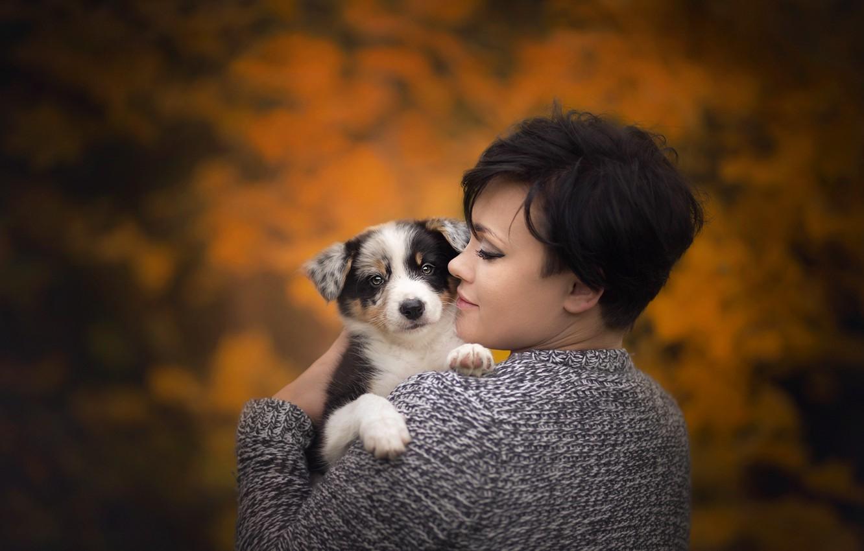 Фото обои осень, девушка, щенок
