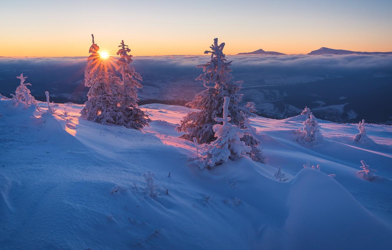 Фото обои зима, лес, небо, солнце, облака, лучи, снег, пейзаж, закат, горы, ветки, холмы, красота, сказка, вечер, …