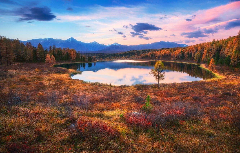 Фото обои осень, небо, озеро, краски, Россия, леса