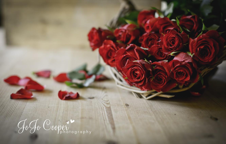 Фото обои цветы, доски, розы, лепестки, корзинка