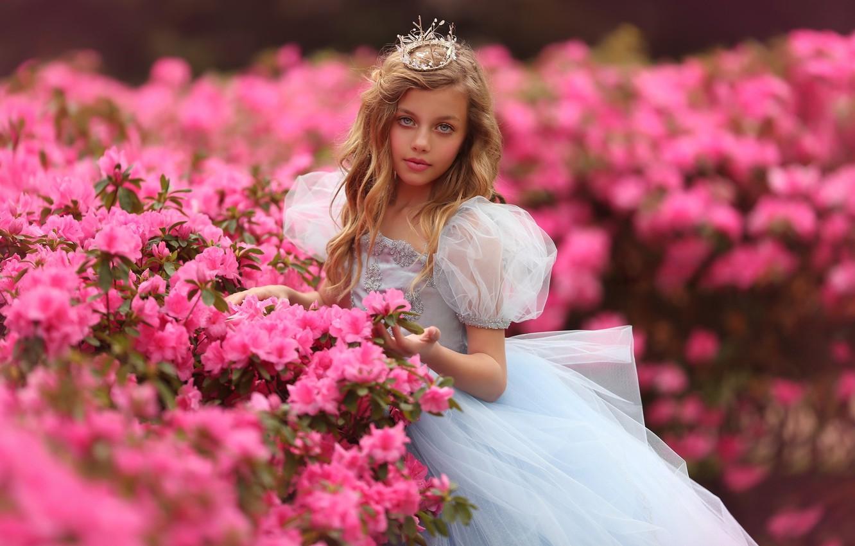 Фото обои цветы, природа, корона, платье, девочка, наряд, принцесса, кусты