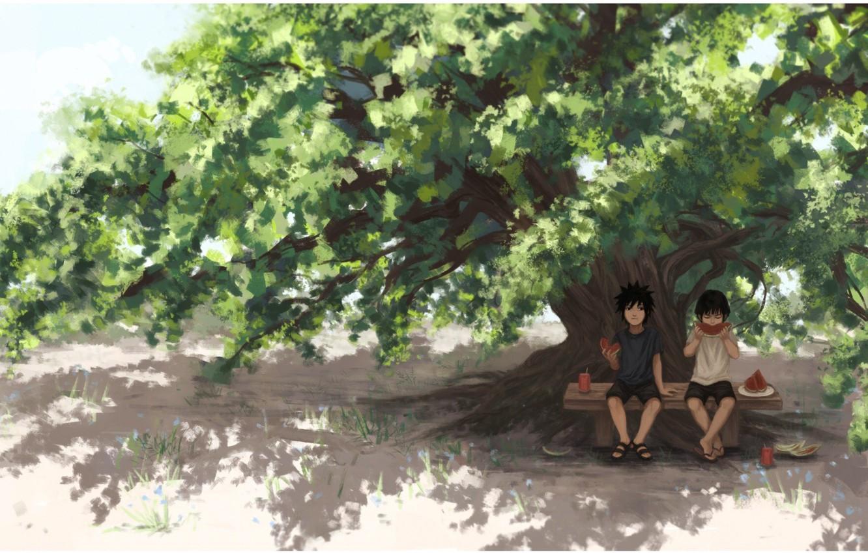Фото обои арбуз, Naruto, друзья, art, tree, Hashirama Senju, Uchiha Madara