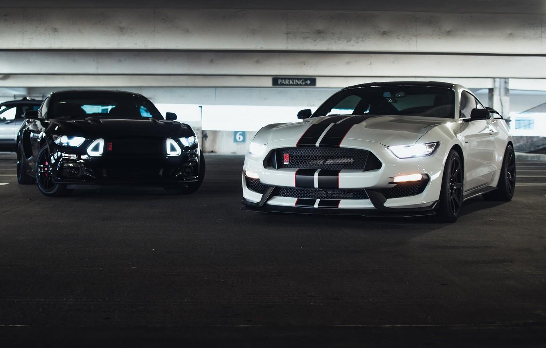 Фото обои Mustang, Ford, Black, Lights, White, Muscle Cars
