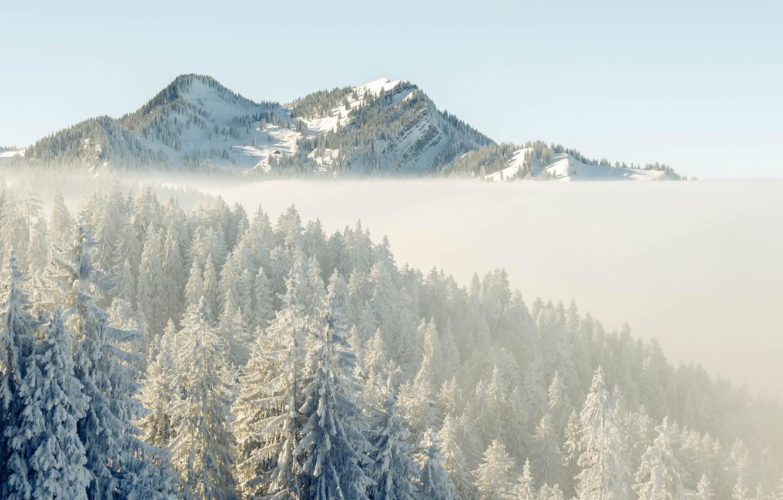 Фото обои зима, снег, горы, утро