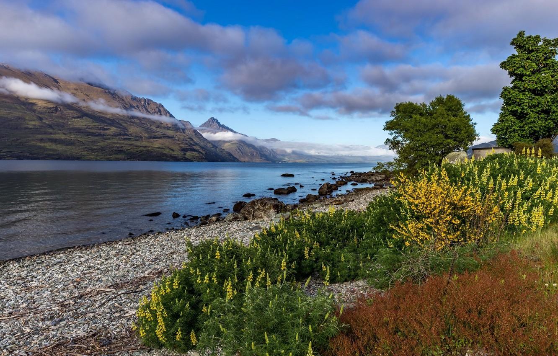 Фото обои цветы, горы, озеро, травы